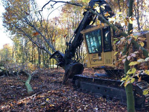 machine-perilhon-travaux-forestiers