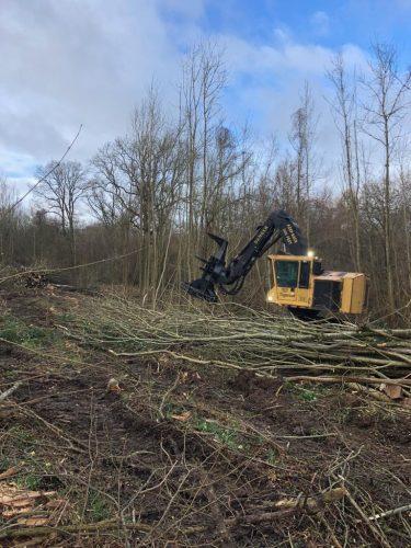 perilhon-travaux-forestiers