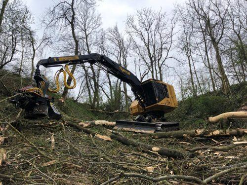 travaux-forestiers-machine